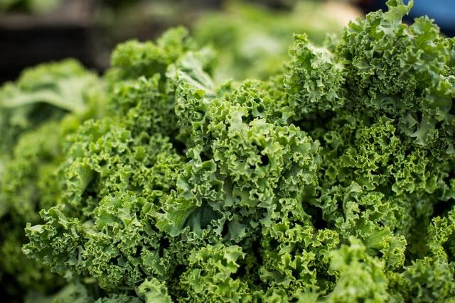 Contraindicaciones del Kale