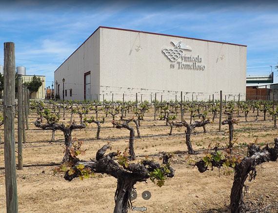 Cooperativa vinícola de Tomelloso
