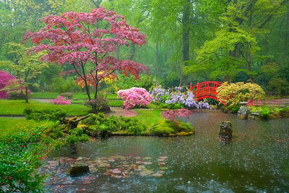 Jardín Japonés (dentro del parque Clingendael)