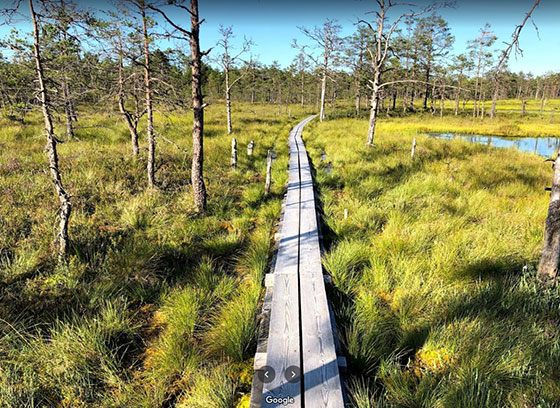 Parque Nacional Lahemaa